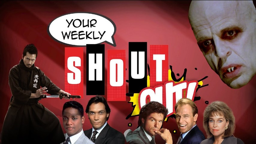 Vampires, Lawyers, And Nunchucks - Your Weekly Shout Out! Episode 46