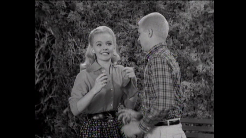 The Many Loves Of Dobie Gillis: S1 E17 - The Hunger Strike