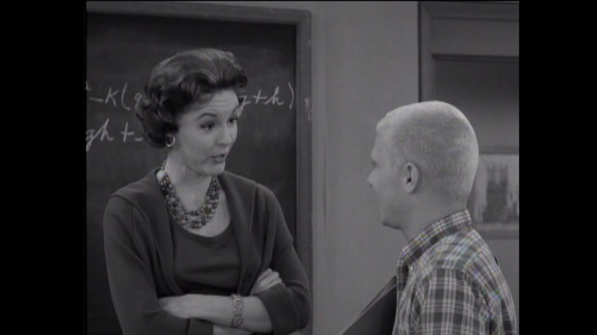 The Many Loves Of Dobie Gillis: S1 E19 - Room At The Bottom