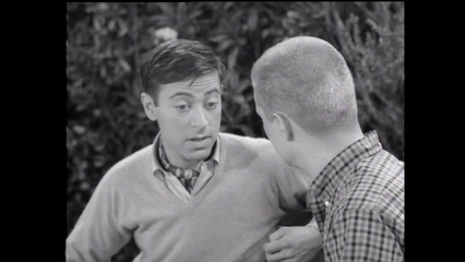 The Many Loves Of Dobie Gillis: Soup and Fish
