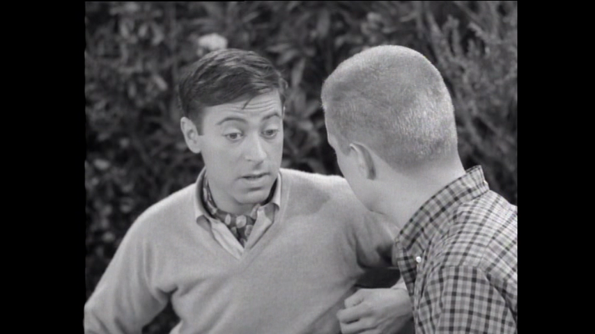 The Many Loves Of Dobie Gillis: S1 E30 - Soup And Fish