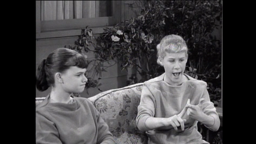 The Many Loves Of Dobie Gillis: S2 E33 - Everything But The Truth