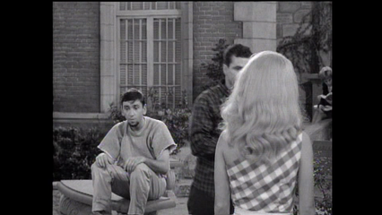 The Many Loves Of Dobie Gillis: S4 E2 - What's A Little Murder Between Friends?