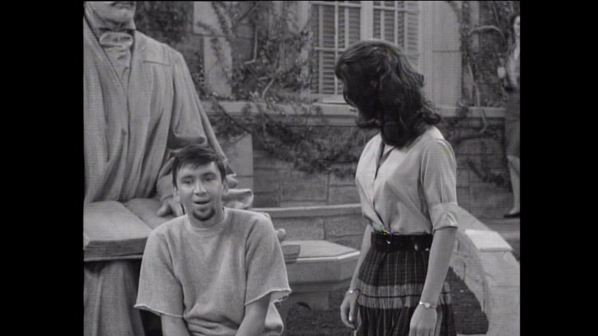 The Many Loves Of Dobie Gillis: S4 E10 - Strictly For The Birds