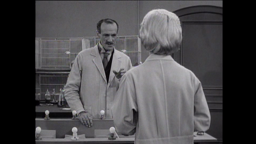 The Many Loves Of Dobie Gillis: S4 E12 - Doctor Jekyll And Mister Gillis