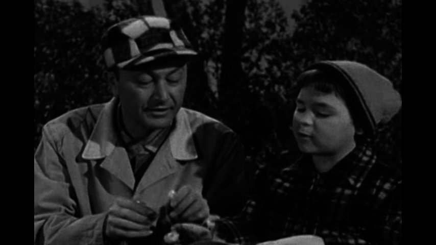 Father Knows Best: S6 E14 - Father, The Naturalist