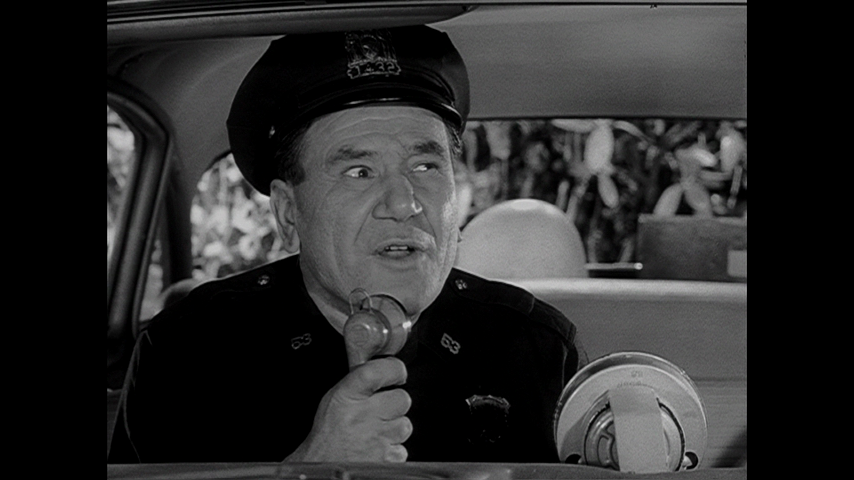 Car 54, Where Are You?: S1 E19 - Toody's Paradise
