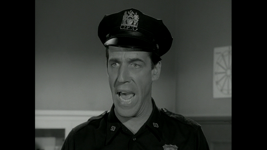 Car 54, Where Are You?: S2 E1 - Hail To The Chief